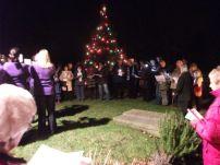 Carols round the Tree Dec. 2013