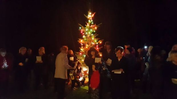 Carols Round the Tree, 2015 002a